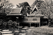 Teak Prints - Tradition Thai style living house Print by Buchachon Petthanya