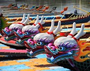 Frightening Posters - Traditional Dragon Boats in Taiwan Poster by Yali Shi