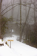 Foggy Day Prints - Trailhead Covered With Snow Print by Will and Deni McIntyre