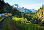 Chugach Posters - Train from the North Poster by Adam Pender