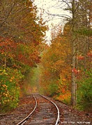 Sherri Brown - Train tracks in Autumn