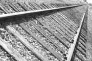 Train Photos - Train Tracks Triangular in Black and White by James Bo Insogna