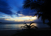 Tropical Sunset Prints - Tranquil Azure Print by Pete Reynolds