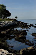 Fishers Posters - Tranquil Shoreline Of Long Island Sound Poster by Todd Gipstein