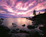 Lake Tahoe Framed Prints - Tranquility  Framed Print by Vance Fox