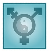 Transgender Framed Prints - Transgender Balance, Conceptual Artwork Framed Print by Stephen Wood