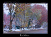 Autumn Prints Framed Prints - Transitions Autumn to Winter Snow Poster Framed Print by James Bo Insogna
