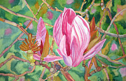 Singer Painting Originals - Transitions of a Magnolia by Debi Singer
