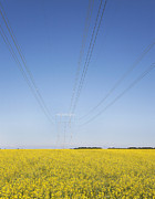 Transmission Prints - Transmission Towers and Power Lines Print by Jaak Nilson