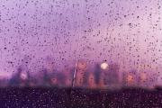 Rainy Day Photos - Trapped Behind Glass by Ariane Moshayedi