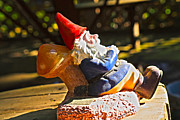Yard Decorations Posters - Travel Gnome Sunning Poster by Cheryl Young