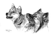Dogs Drawings - Treats Please by Rod Varney