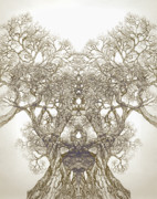Pen And Ink Drawing Digital Art Metal Prints - Tree 20 Hybrid 1 Metal Print by Brian  Kirchner