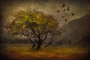 Nature Scene Mixed Media Metal Prints - Tree and Birds Metal Print by Svetlana Sewell