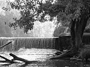 Fine Art Photograph Art - Tree and Dam by Michael L Kimble