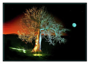 Moonlit Night Prints - Tree and Moon Print by Mal Bray
