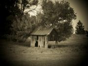 Shack Prints - Tree and Shack Print by Michael L Kimble