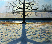 Picturesque Painting Prints - Tree and Shadow Calke Abbey Derbyshire Print by Andrew Macara