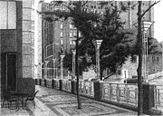 City Scene Drawings - Tree at 801 Grand by Joel Lueck