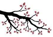 Silhouette Drawings - Tree branch by Frank Tschakert