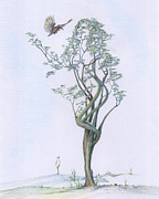 Mark Drawings - Tree Dancer in Flight coloured by Mark Johnson