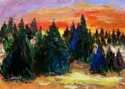 Fir Trees Drawings - Tree Farm Sunset by John  Williams