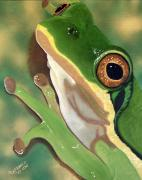 Feet Originals - Tree Frog Eyes by Debbie LaFrance