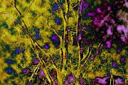 Abstract.trees Digital Art Prints - Tree Glow Print by Linda Sannuti