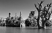 Myanmar Prints - Tree In Lake Print by Glenn Sundeen - TigerPal