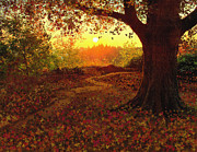 Robert Foster - Tree Leaves