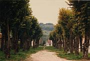 France Photo Originals - Tree Lined Pathway in Lyon France by Nancy Mueller