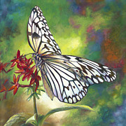 Blues And Greens Prints - Tree Nymph Butterfly Print by Nancy Tilles
