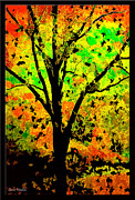 Colors Of Autumn Framed Prints - Tree Of Color 3 Framed Print by Debra     Vatalaro