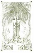 Tree Of Life Drawings - Tree of Life by Tallulah P