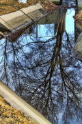 Print On Canvas Framed Prints - Tree Reflection From No Where Photography Image Framed Print by James Bo Insogna