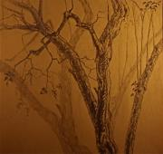 Printed Drawings - Tree Shadow Tracery by Chris  Riley