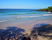 Island Photos Prints - Tree Shadows at Hapuna Beach Print by Bette Phelan