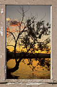 Stock Images Prints - Tree Silhouette Lake Sunset Window View Print by James Bo Insogna