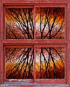 Forsale Prints - Tree Sunset Abstract Red Rustic Picture Window Frame Photos Fine Print by James Bo Insogna