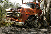 Ford Pickup Framed Prints - Tree Truck Framed Print by Peter Chilelli