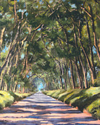 Koloa Framed Prints - Tree Tunnel Shadwos Framed Print by Dawn Lundquist