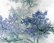 Blue Leaves Framed Prints - Trees Above Framed Print by Rebecca Margraf