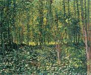 Wooded Prints - Trees and Undergrowth Print by Vincent Van Gogh