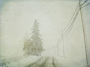 Cold Temperature Art - Trees And Wires by Nichole Renee Photography