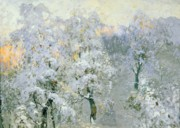 White Russian Painting Posters - Trees in Wintry Silver Poster by Konstantin Ivanovich Gorbatov