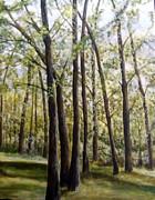 Trees Print by Lorna Skeie