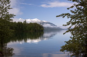 Lake Mcdonald Framed Prints - Trees Mountain Lake Framed Print by Amanda Kiplinger