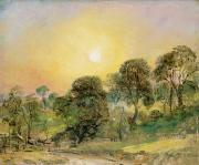 Sun Light Framed Prints - Trees on Hampstead Heath at Sunset Framed Print by John Constable