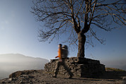 Colour-image Prints - Trekking Around A Tree With A Stone Print by Alex Treadway