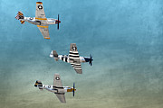 P51 Mustang Posters - Tres Mustangs Poster by Daniel Daugherty